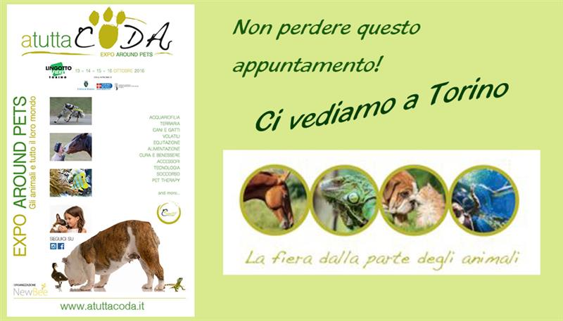 A TUTTA CODA – EXPO AROUND PETS